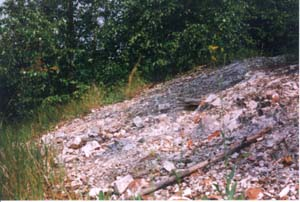 Remains of church foundation, where the priest Ivan served, click to enlarge