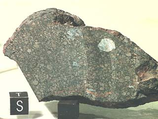 Efremovka, a carbonaceous CV3 chondrite with white refractory inclusions (CAIs). CAIs are the oldest material of the Solar System.